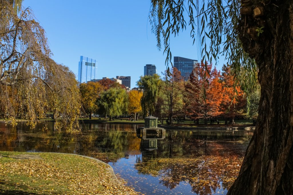Boston Common, un petit Central Park au coeur de la ville