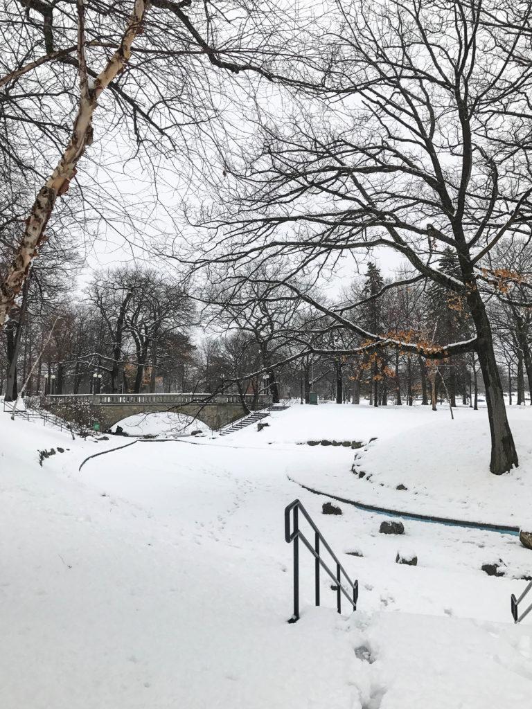 Un petit air de Central Park ?
