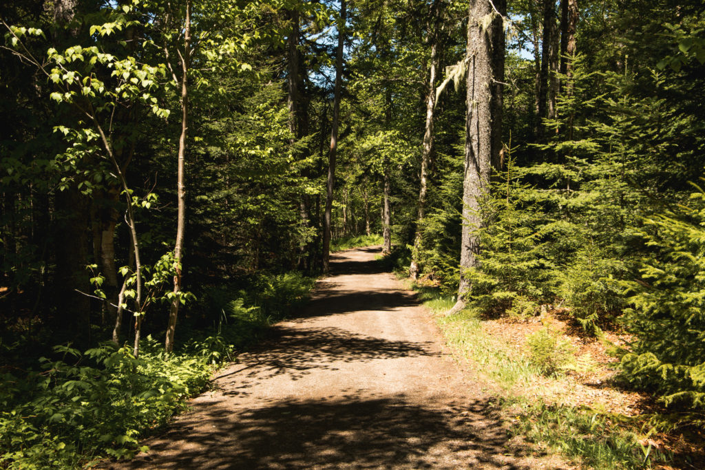 Road trip au Nouveau-Brunswick | Hopewell Rocks