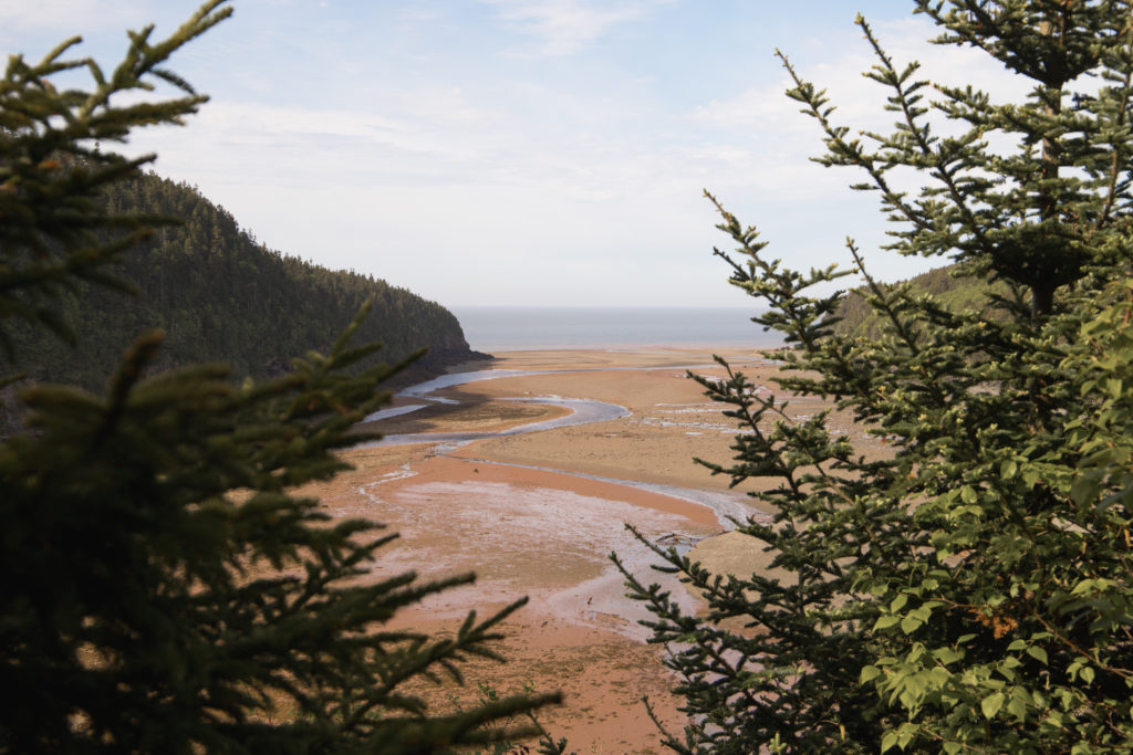 Road trip au Nouveau-Brunswick | Parc national Fundy