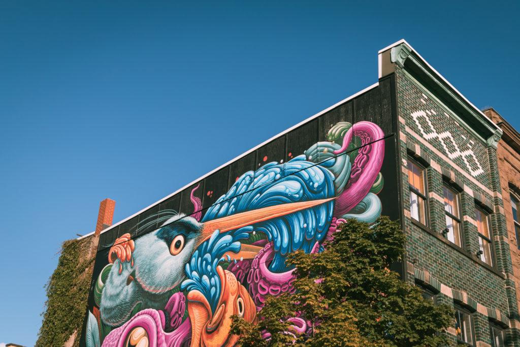 Nouvelle-Écosse | 10 choses à faire à Halifax