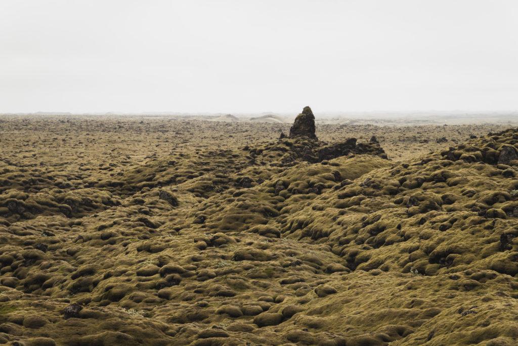 Islande | Le Cercle d'Or et les merveilles du sud -Skaftáreldahraun