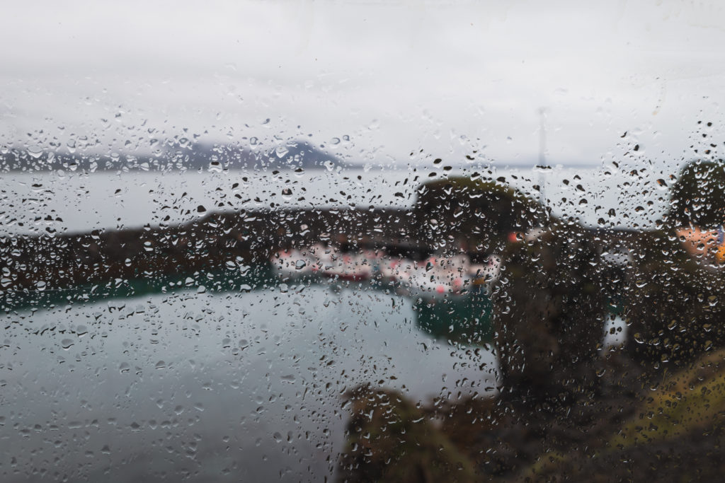 Islande | La péninsule du Snæfellsness - Arnarstapi