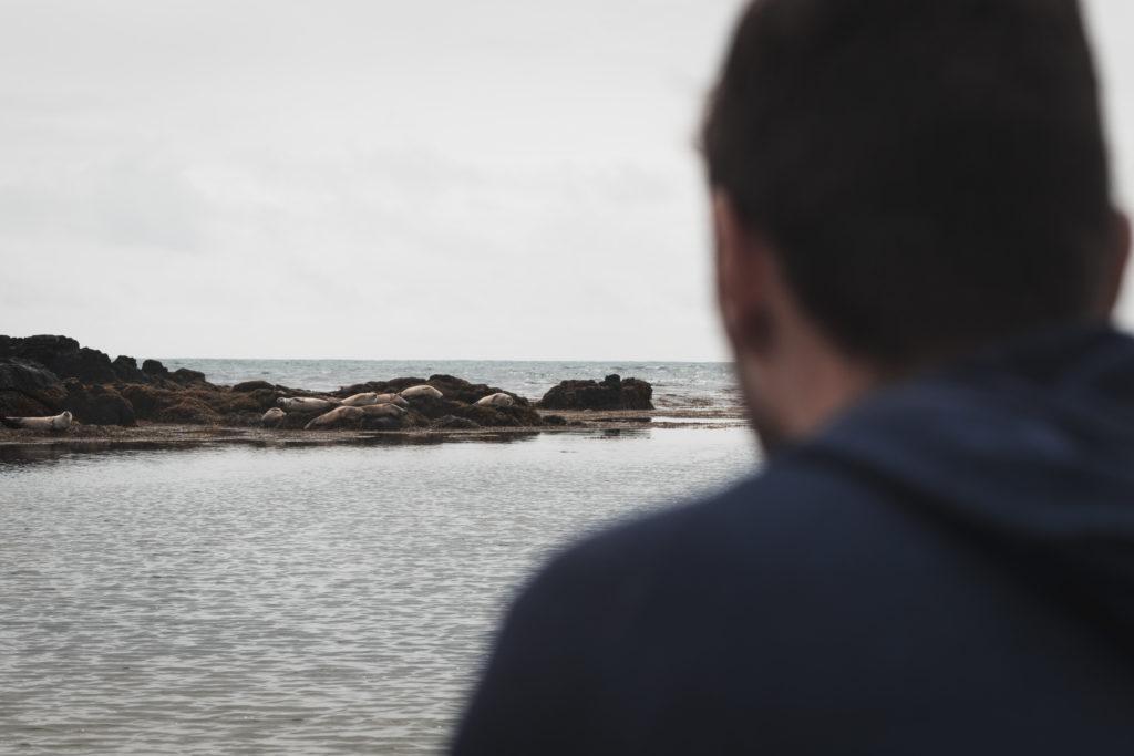 Islande | La péninsule du Snæfellsness - Ytri-Tunga
