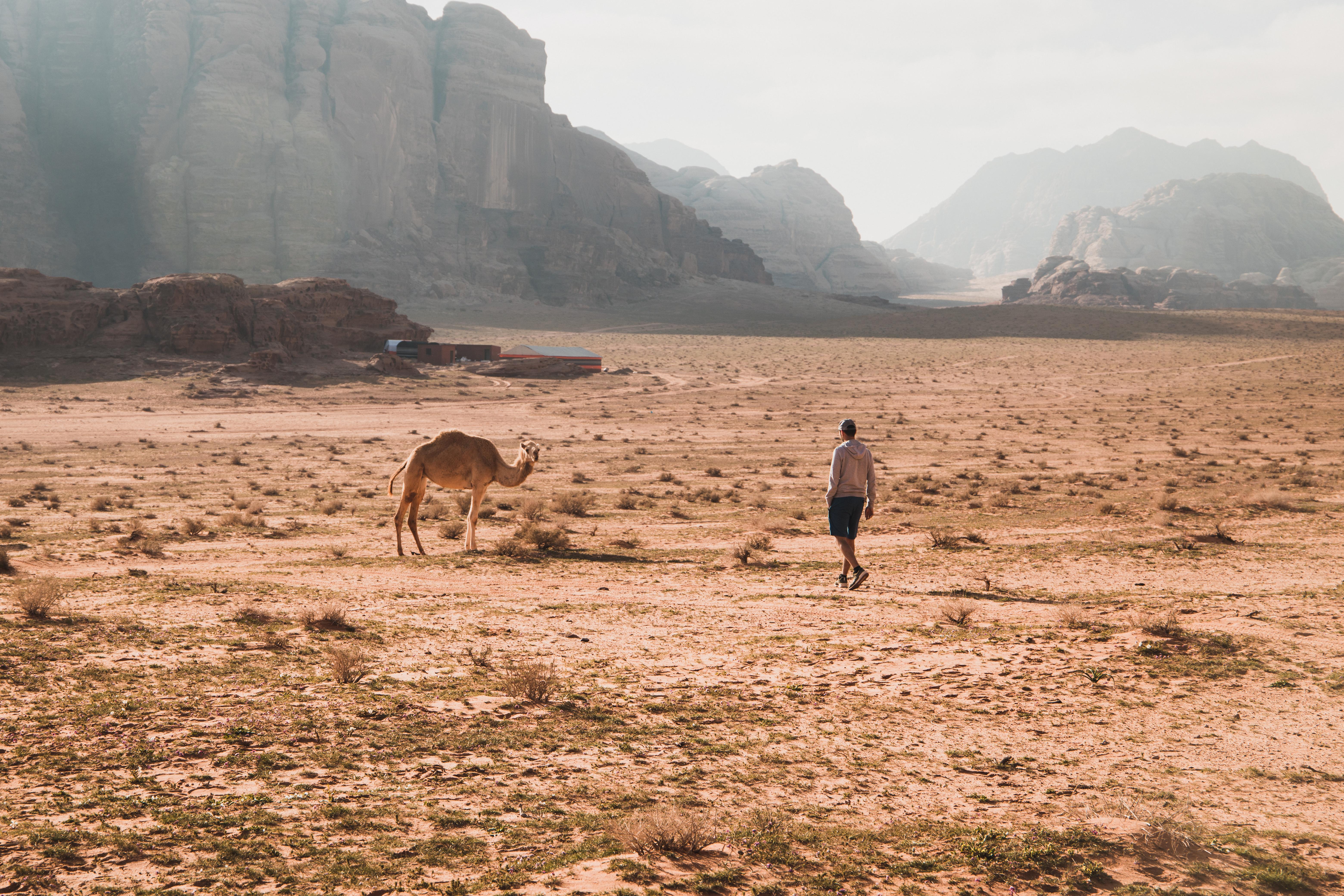 Wadi Rum - Préparer son road trip en Jordanie