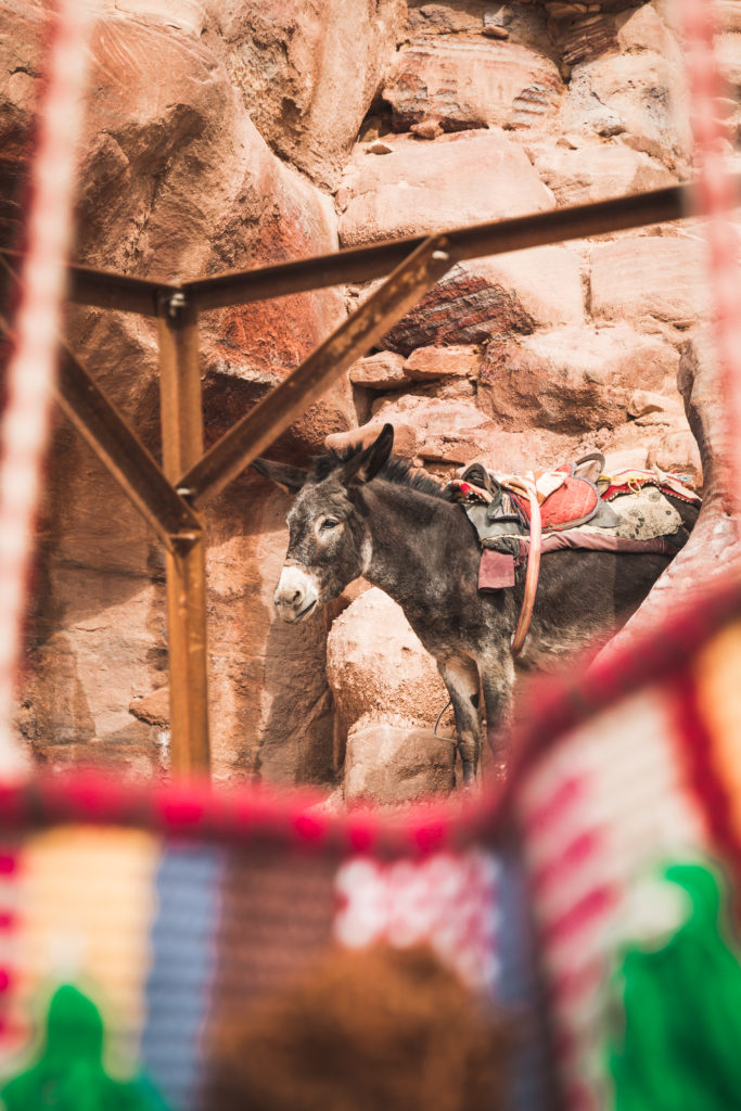 Jordanie | Notre guide pour découvrir Pétra