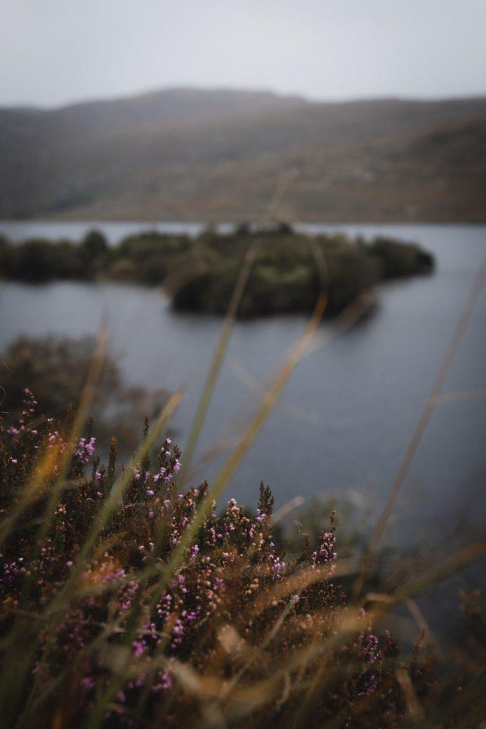 Road trip en Irlande | Parc national de Glenveagh